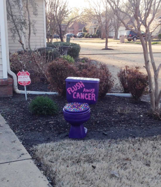 Local News: Group hopes to flush away cancer with fundraiser (4/15